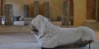 UNA SERA A PALAZZO MAZZOLANI. Apertura straordinaria e visita guidata alle esposizioni e al deposito di materiali archeologici