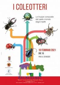 """""""I COLEOTTERI. Le truppe corazzate del vasto mondo degli insetti"""" - in mostra dal 19 febbraio al 30 maggio 2021"""